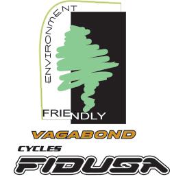 Logo-Fidusa